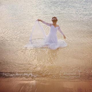 ドレスin海の写真・画像素材[1428176]