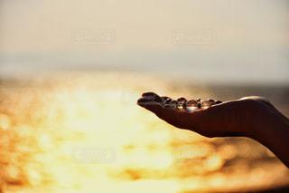 夕日シルエットの写真・画像素材[1428969]