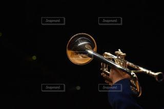 音楽の写真・画像素材[1429550]