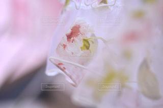 レースのカーテンの写真・画像素材[1432041]