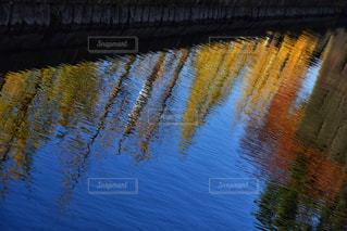 水の体の写真・画像素材[1432837]
