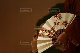 日舞の写真・画像素材[1552326]
