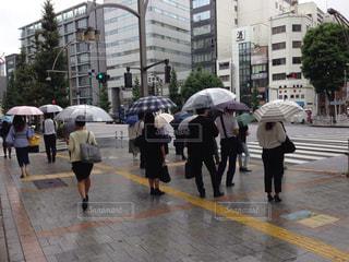 横断歩道で信号を待つ人々の写真・画像素材[1430869]