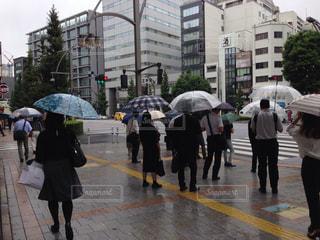 横断歩道で信号を待つ人々の写真・画像素材[1430870]