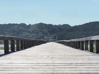 橋の先にはの写真・画像素材[1428752]