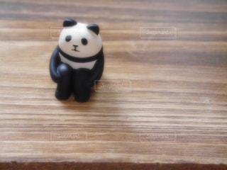 パンダの写真・画像素材[1466890]