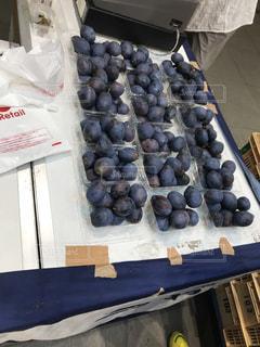 果物の写真・画像素材[1497162]