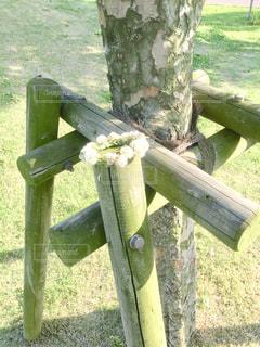 草の上に座って編んだの写真・画像素材[1430777]