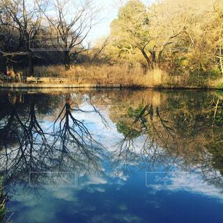 水面に映る空の写真・画像素材[1430919]