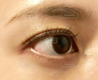近くに人の顔のアップの写真・画像素材[1531303]