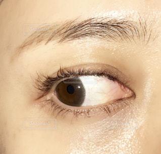 近くに人の目のアップの写真・画像素材[1531356]