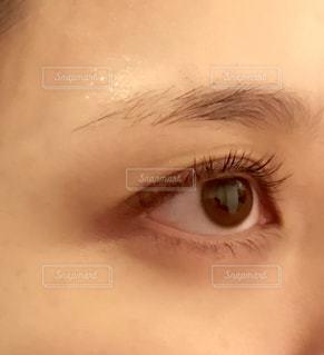 目のアップの写真・画像素材[1596450]