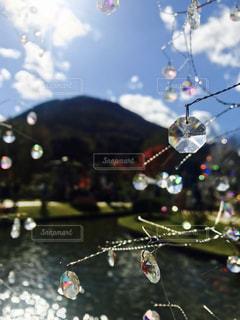 ガラスの森美術館の写真・画像素材[1431825]