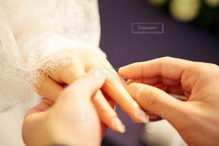 結婚式 指輪交換の写真・画像素材[1443316]