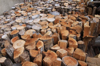 薪の写真・画像素材[1447977]