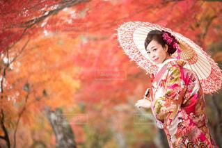 日本の秋〜紅葉と和装〜の写真・画像素材[1432706]