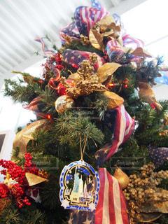 クリスマスツリーの写真・画像素材[1433870]