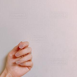 手の写真・画像素材[1560229]