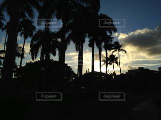 ハワイの風景の写真・画像素材[1755921]