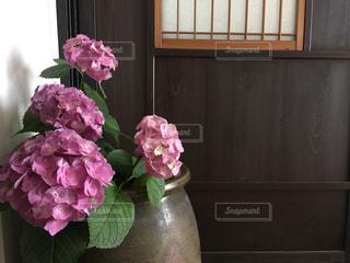 紫とピンクの紫陽花一杯の花瓶の写真・画像素材[1436752]