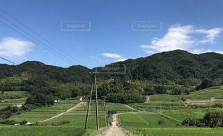 のどかな風景の写真・画像素材[1450609]