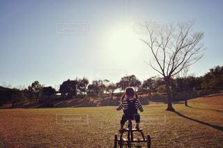 公園でさんぽの写真・画像素材[1457097]