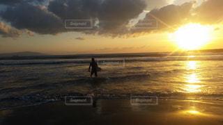 日の出サーフィンの写真・画像素材[1502478]