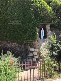 目白 関口教会 マリア様の写真・画像素材[1441049]