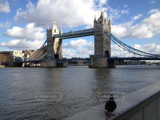 ロンドン 橋の写真・画像素材[1436437]