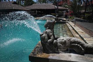 バリのプールの写真・画像素材[1443935]