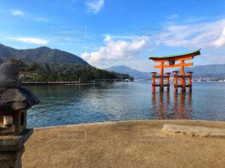 厳島神社の鳥居の写真・画像素材[1443936]