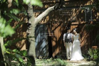 森での結婚式の写真・画像素材[1836281]