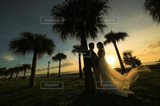 ヤシの木とビーチの前撮りの写真・画像素材[1836282]