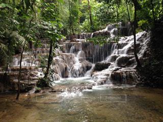 森の中の大きな滝の写真・画像素材[1437295]