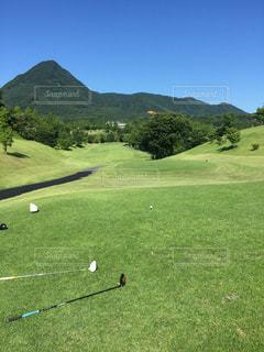 フィールドのゴルフ ・ ボールの写真・画像素材[1437352]