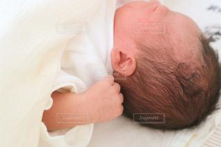 hello,babyの写真・画像素材[1437337]
