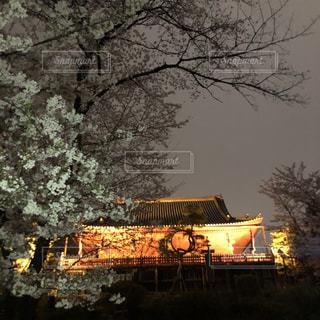 日本の風景の写真・画像素材[1875949]