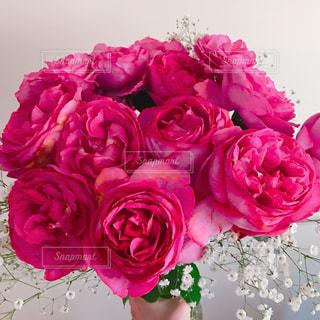 ピンクの花で一杯の花瓶の写真・画像素材[1438340]