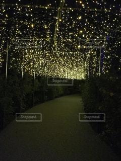 夜の街の景色の写真・画像素材[1534811]