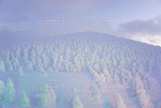 蔵王の樹氷の写真・画像素材[1439734]