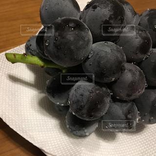 フルーツがいっぱい皿の写真・画像素材[1439832]
