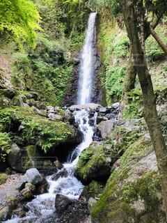 森の中の大きな滝の写真・画像素材[2118233]