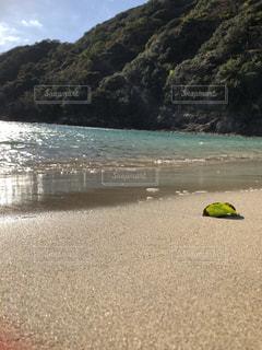 山とビーチと寂しげな葉の写真・画像素材[1639686]