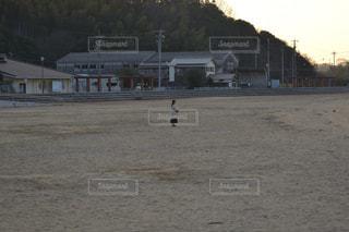 汚れフィールド上に立って野球選手のグループの写真・画像素材[1761177]