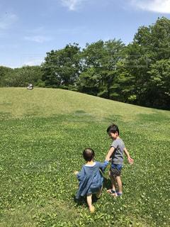 芝生のフィールドで仲良し兄弟のお散歩の写真・画像素材[1456222]