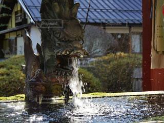 北口本宮富士浅間神社の手水舎の写真・画像素材[1450555]