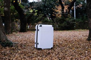 スーツケースの写真・画像素材[1655977]