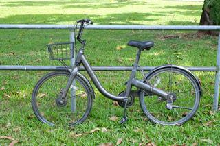 公園の自転車の写真・画像素材[1733476]