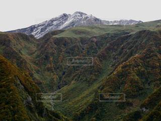 初雪と紅葉の写真・画像素材[1445695]