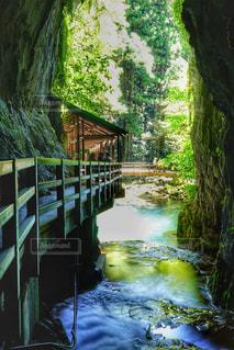 秋芳洞入り口の写真・画像素材[1446413]